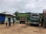 """Tiếp vụ trạm cân thu mua nông sản không phép ở Kon Tum: """"Tiền trảm hậu tấu"""""""