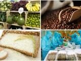 Xuất khẩu nông sản Việt sang EU tăng vọt