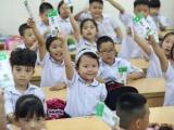 Việc đảm bảo an toàn thực phẩm trong triển khai sữa học đường được chú trọng