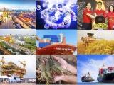 Kinh tế Việt Nam là điểm sáng ấn tượng trong đại dịch Covid-19 toàn cầu