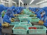 Dự báo xuất khẩu thủy sản 3 tháng cuối năm đạt 2,3 tỷ USD