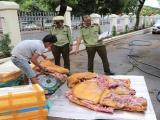 Đắk Lắk: Phát hiện 3 tạ thịt heo bốc mùi trên đường đưa đi tiêu thụ
