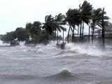 Phó Thủ tướng Trịnh Đình Dũng chỉ đạo tập trung ứng phó với bão số 7