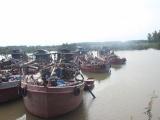 Quảng Ninh: Bắt giữ 6 tàu vận chuyển, kinh doanh cát trái phép