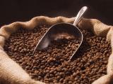 Giá cà phê tiếp tục giảm, hồ tiêu cao nhất 53.000 đồng/kg