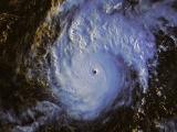 Dự báo bão số 10 sẽ đổ bộ ngày 5/11, gió mạnh cấp 7-8