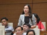 Các đại biểu Quốc hội thảo luận về sai sót trong SGK Tiếng Việt lớp 1