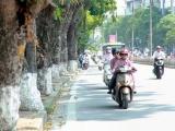 Dự báo thời tiết ngày 6/11: Bắc Bộ nắng hanh, Trung Bộ tiếp tục có mưa