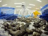 Canada chiếm 5% tổng giá trị xuất khẩu tôm Việt Nam