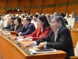 Quốc hội thông qua Nghị quyết về tổ chức chính quyền đô thị tại TPHCM