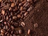 Cập nhật diễn biến giá cà phê và hồ tiêu ngày 18/11