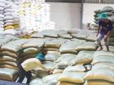 Chính phủ cấp hơn 4.000 tấn gạo hỗ trợ 3 tỉnh bị thiên tai, mưa lũ
