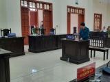 Ninh Bình: Nguyên Chủ tịch HĐQT quỹ tín dụng lĩnh án chung thân