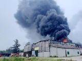 Gần 1.000m2 kho sơn PU ở Nghệ An bốc cháy dữ dội