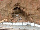 Hà Tĩnh: Phát hiện ngôi mộ cổ có niên đại khoảng 1.300 năm