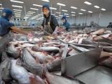 Doanh nghiệp Việt cần lưu ý thủ tục xuất khẩu thủy sản sang Trung Quốc