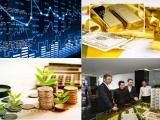 Dấu hiệu dịch chuyển của thị trường đầu tư