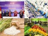 Cơ hội tăng trưởng cho xuất khẩu của Việt Nam trong Hiệp định UKVFTA
