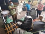 Lạng Sơn: Phát hiện lô găng tay y tế đã qua sử dụng