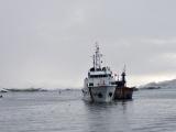 Cứu thành công tàu cá cùng 7 thuyền viên gặp nạn trên biển