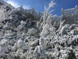 Dự báo thời tiết ngày 11/1: Bắc Bộ tiếp tục rét đậm, rét hại