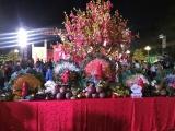 TPHCM: Sắp diễn ra lễ hội Tết Việt 2021 với nhiều hoạt động hấp dẫn