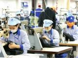 Doanh nghiệp FDI xuất siêu gần 34 tỷ USD trong năm 2020