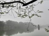 Không khí lạnh suy yếu, Bắc Bộ tăng nhiệt vào cuối tuần