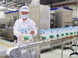 Kết quả kinh doanh quý 4 và cả năm 2020 của Công ty CP Sữa Việt Nam