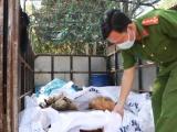 Bình Dương: Phát hiện, tịch thu 370 kg gà chết không rõ nguồn gốc