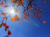 Dự báo thời tiết ngày 22/2: Bắc Bộ nắng ấm, Tây Nguyên và Nam Bộ lạnh về đêm