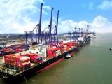 Hải Phòng: Phê duyệt chủ trương xây dựng 2 bến container tại khu bến cảng Lạch Huyện