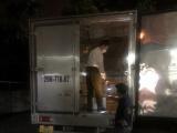 Quảng Ninh: Bắt giữ xe tải vận chuyển lô cá vàng giống nghi nhập lậu