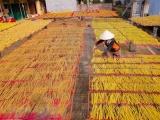 Làng hương xạ Cao Thôn: Nét đẹp lao động bình dị của vùng quê Hưng Yên