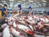 Nhiều thị trường tăng nhập khẩu thủy sản Việt Nam