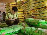 Gia Lai: Tạm giữ hơn 3,6 tấn phân bón hết hạn sử dụng