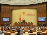 Quốc hội thảo luận dự thảo Luật Phòng, chống ma túy (sửa đổi)