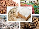 Xuất khẩu nông sản thu về hơn 10 tỷ USD trong quý I/2021