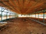 Ninh Thuận: Tràn lan trang trại điện mặt trời áp mái nhà núp bóng sản xuất nông nghiệp
