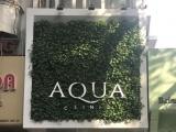 """Thẩm mỹ viện Aqua Clinic: Phẫu thuật thẩm mỹ không phép """"núp bóng"""" mác Spa chăm sóc da?"""