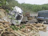 Thanh Hóa: Xử phạt doanh nghiệp 46 triệu đồng trong vụ TNGT khiến 7 người tử vong