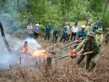 Thanh Hóa: Triển khai đồng bộ nhiều phương án phòng chống cháy rừng