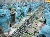 Xuất khẩu thuỷ sản tăng 14% trong 5 tháng đầu năm