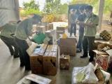 Thừa Thiên Huế: Phát hiện, thu giữ hơn 1200 sản phẩm mỹ phẩm nhập lậu