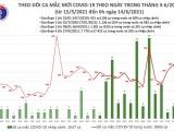 Sáng 14/6: Việt Nam ghi nhận 92 ca mắc COVID-19 tại 8 tỉnh, thành phố