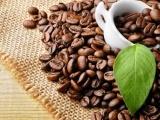 Giá cà phê hôm nay 20/6: Trong nước vẫn tăng giữa bối cảnh cà phê thế giới suy giảm