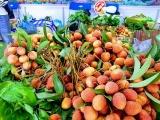Việt Nam dự kiến xuất khẩu 100 tấn vải thiều sang Úc