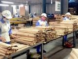 Xuất khẩu gỗ và lâm sản có mức tăng trưởng ấn tượng trong nửa đầu năm 2021