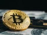 Bitcoin suy yếu, dự báo có thể mất giá đến 80% trong tương lai