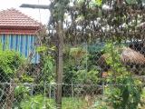 Đại Lộc-Quảng Nam: Lãnh đạo xã cho người nhà liên kết thuê đất công trái quy định?